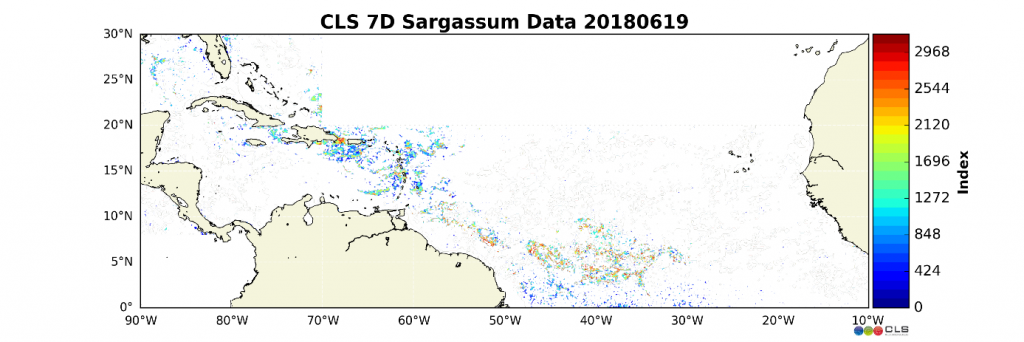 Sargassum index