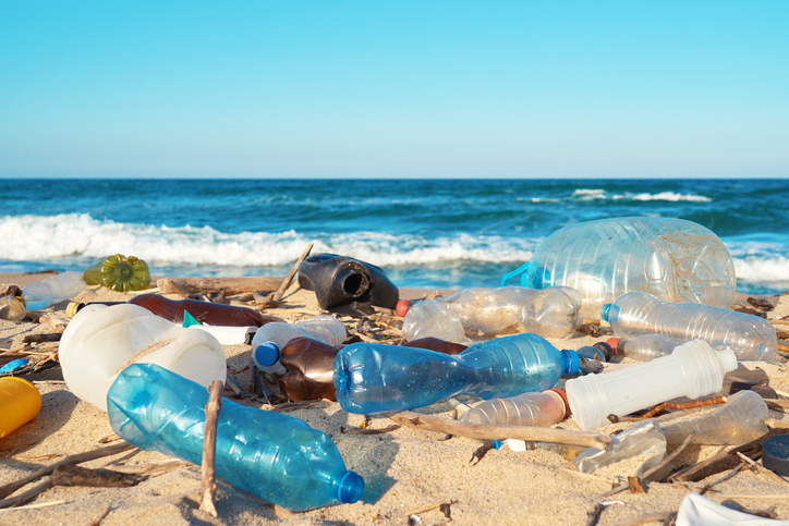 plastic pollution on the beach